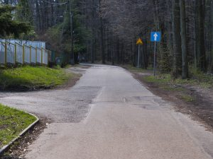 Ulica Pocztowa. Po lewej stronie od osi jezdni wjazdy do zabudowań, po prawej granica lasu oraz znak informacyjny D3 – droga jednokierunkowa
